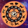 Совместимость знаков зодиака по китайскому гороскопу